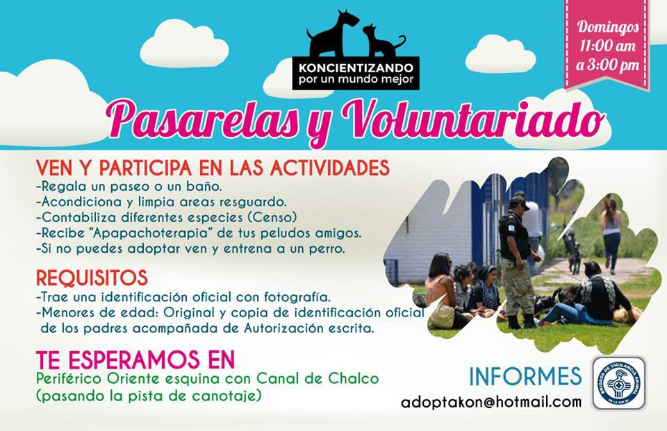 Pasarelas y voluntariado